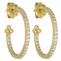 Diamond-Pave-Hoop-Earrings-Coupon.jpg