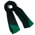 Emerald-Dip-Dye-Scarf-Coupon.jpg