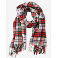Plaid-Scarf-Coupon.jpg