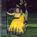 appliques-flower-girl-dress.jpg