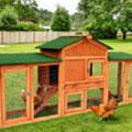 chicken-coop-promo.jpg