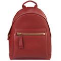 ford-backpack.jpg