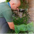 maintain-garden-promo.jpg