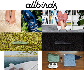 Allbirds coupon code